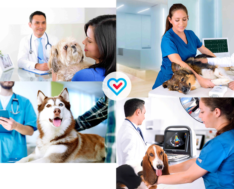 Evaluación cardiológica
