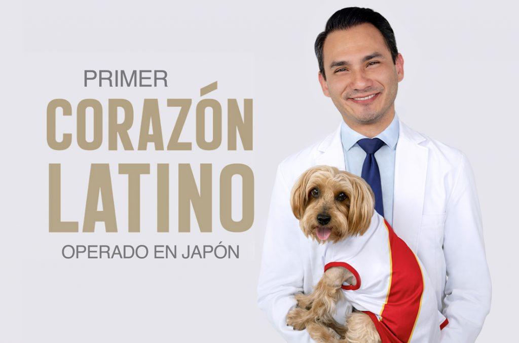 Primera cirugía de corazón en perro peruano